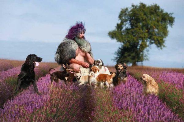 Robert Franz im Lavendelfeld mit Hunde